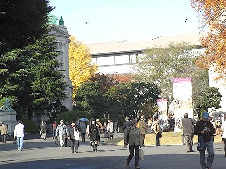 東京国立博物館の様子