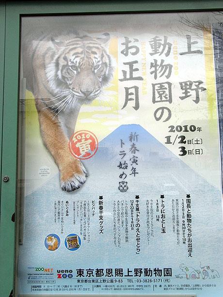 先週お伝えした博物館に続き、動物園でもお正月
